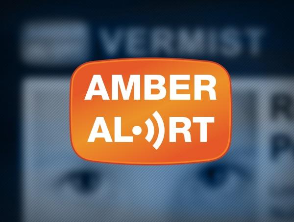 Amber Alert Nederland, Website Ontwerp